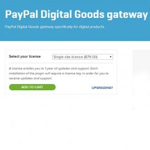 paypal digital goods gateway checkout extension